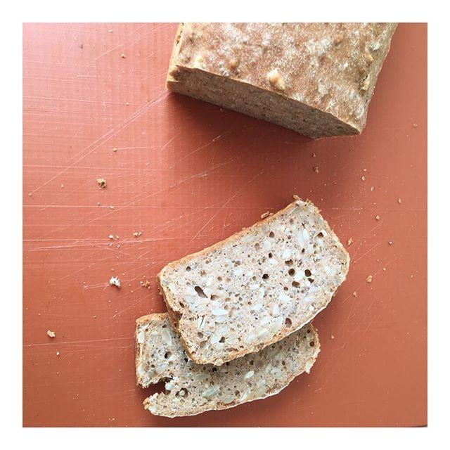 Brot, dass man auch essen darf, wenn man zuckerfrei lebt